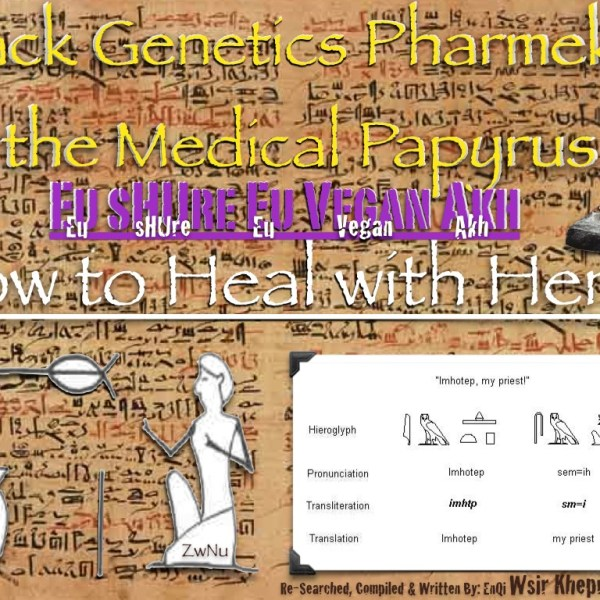 Black Genetics the Medical Papyrus Cover.001