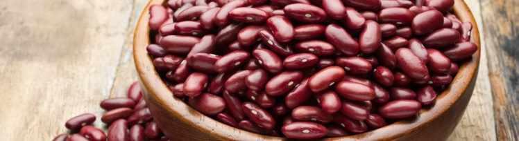 Kidneybohnen mit viel Eiweiß