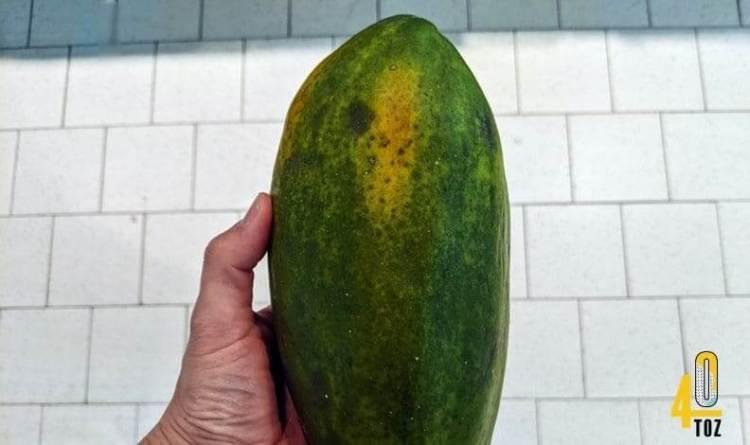 Zuckergehalt von Papayas