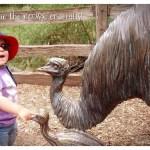 Is statue, emu?