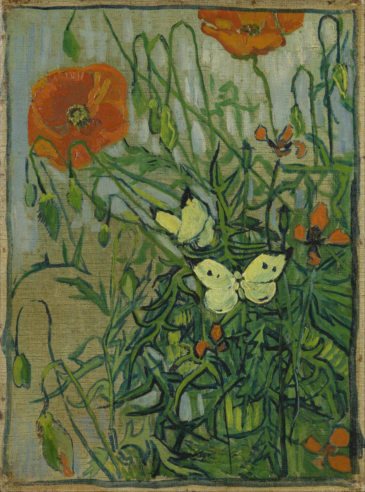 herzogtum-sachsen-weissenfels:  Vincent van Gogh (Dutch, 1853-1890), Poppies and Butterflies, 1890. Oil on canvas,34.5 x 25.5 cm.
