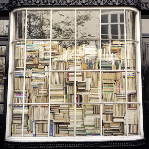 leavingthebutterout:bookshelf porn