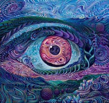 Image result for psychedelic perspective