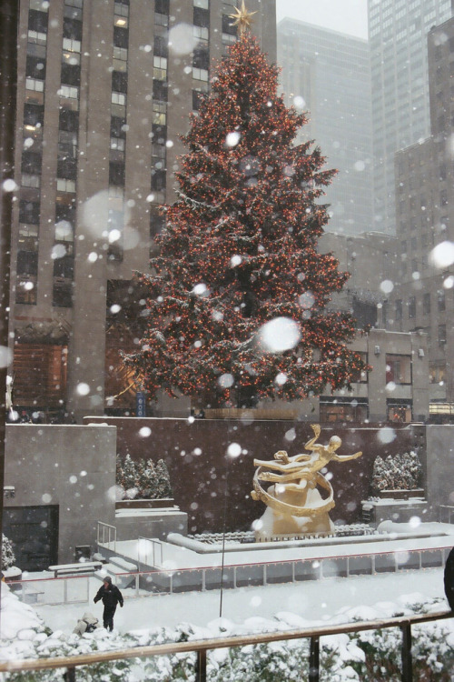 Rockefeller Center with snow falling by (MairimG)