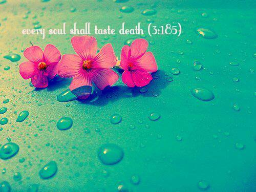 islamic-art-and-quotes: Every soul (Quran 3:185)