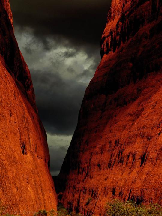 Walpa Gorge walk
