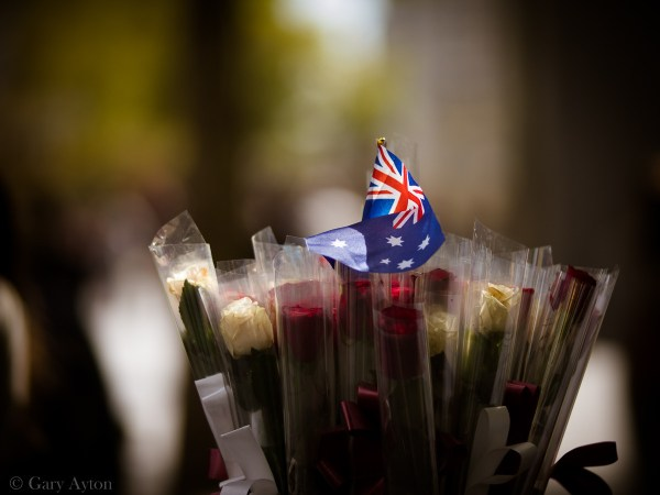 Australia Day flag and roses backlit by low sun
