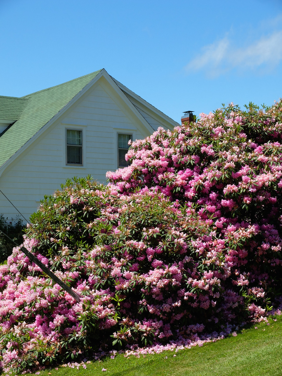 mangia minga // Travels: Lunenburg, Novia Scotia - Knaut Rhuland House