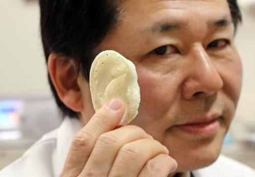 "Japan researchers target 3D-printed body parts    Japanese scientists say they are on their way to being able to create custom-made skin, bone and joints using a 3D printer.   Several groups of researchers around the world have developed small masses of tissue for implants, but now they are looking to take the next step and make them functional.    Tsuyoshi Takato, a professor at the University of Tokyo Hospital, said his team had been working to create ""a next-generation bio 3D printer"", which would build up thin layers of biomaterials to form custom-made parts.    His team combines stem cells—the proto-cells that are able to develop into any body part—and proteins that trigger growth, as well as synthetic substance similar to human collagen.   Using a 3D printer, they are working on ""mimicking the structure of organs""—such as the hard surface and spongy inside for bones, Takato said.    In just a few hours, the printer crafts an implant using data from a Computer Tomography (CT) scan.    These implants can fit neatly into place in the body, and can quickly become assimilated by real tissue and other organs in the patient, the plastic surgeon said.  [read more]"