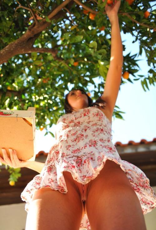 upskirt-fetish:picking fruit