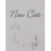 Cover image of game - grey rectangle with 'New Cat' written in cursive font above a stylised sketch of a kitten