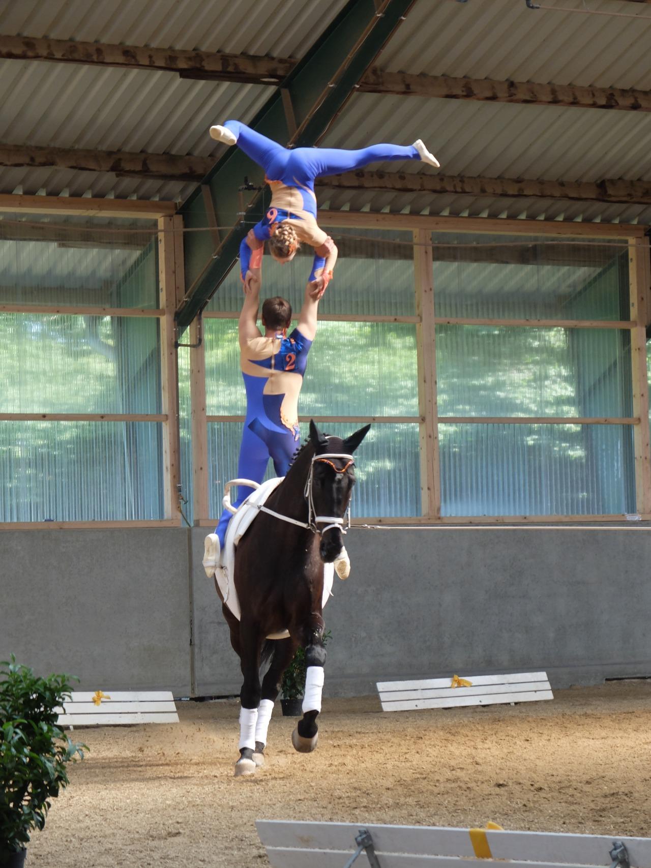 mangia minga - gymnastics on horseback, team RVC Gilching 1