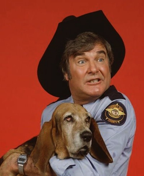 Sheriff Rosco P. Coltrane and Flash