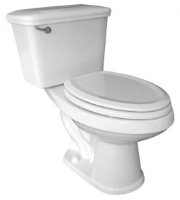 Penguin Toilet