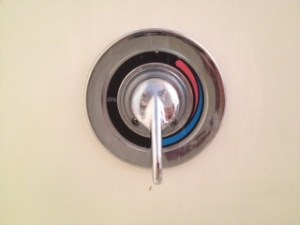 Emily's Tub Shower Valve