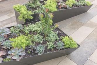 planters at stem