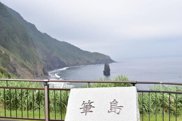 伊豆大島の東側は太平洋の波にさらされ断崖が続く