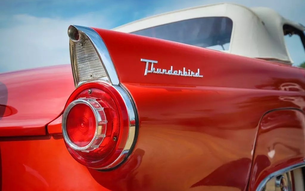 Thunderbird Rose Review – Fly like bird