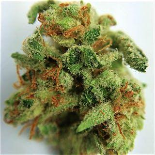 , Wishlist, Buy weed Online
