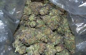 Buy grape ape weed online