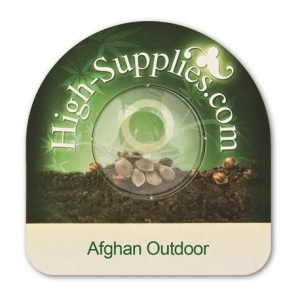 52% Off Afghan Outdoor Fem Seeds