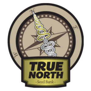 True North Seedbank. Find the latest True North coupons at 420CouponCodes.com