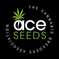 Ace Seeds True North Seed Bank Coupon Code