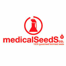 Medical Seed Co Seed City Promotion