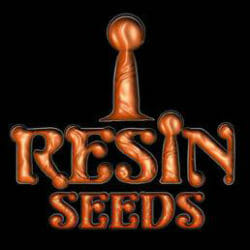 Resin Seeds True North Seed Bank Coupon Code
