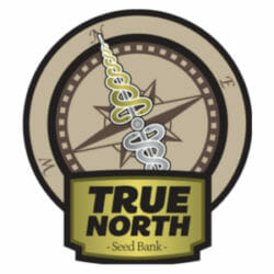 True North Seed Bank Discount Code
