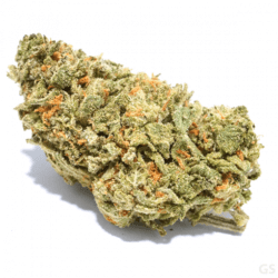 Agent Orange Cannabis Discount Green Society Coupon Code