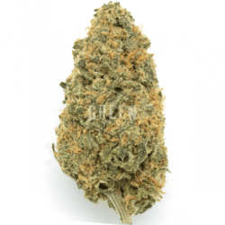 Sugar Cookie Cannabis Green Society Discount Code