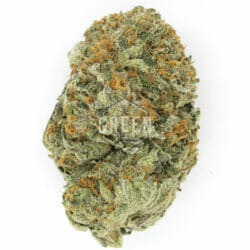 Tuna Kush Cannabis Green Society Coupon Code