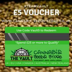 The Vault Voucher
