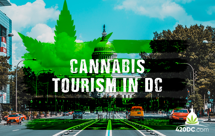 Cannabis Tourism in DC