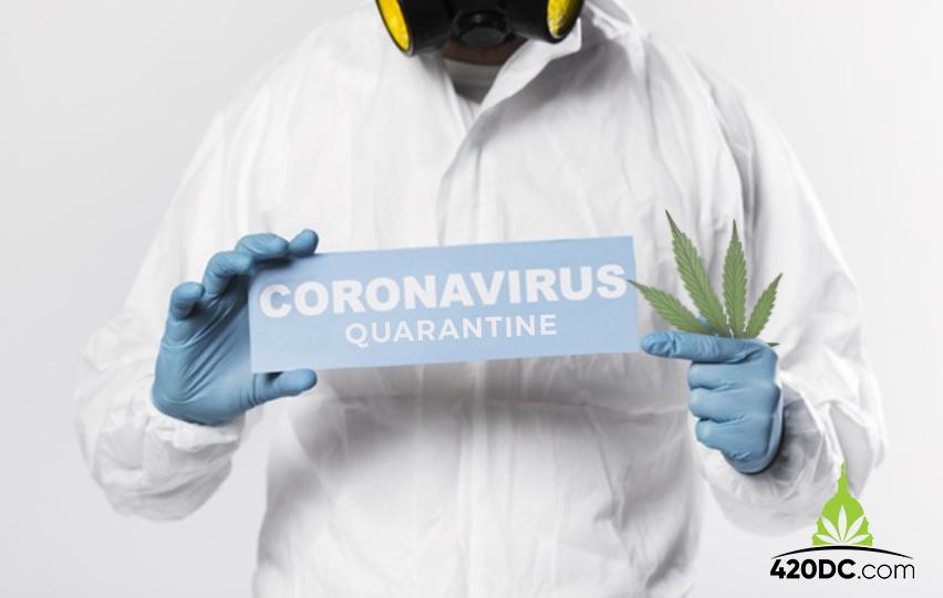 Cannabis in Quarantine How to Get Marijuana Amid COVID-19 Outbreak