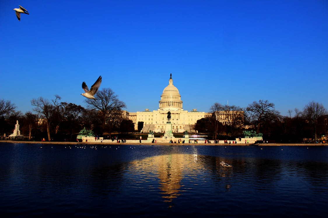 Washington DC, Cannabis Legalization
