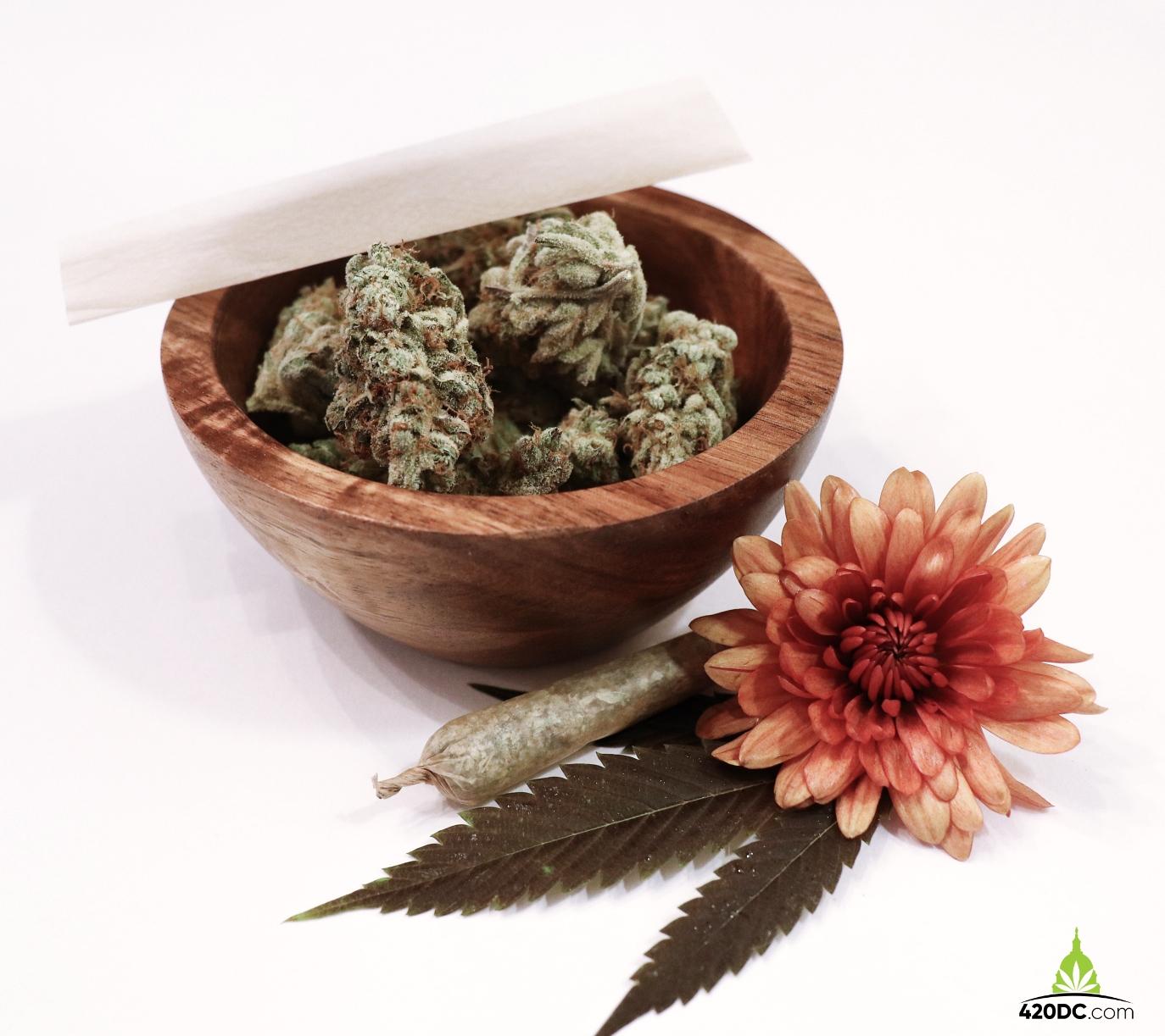 Medical Marijuana, Columbia Care