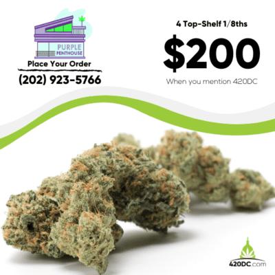Purple Penthouse deal 9