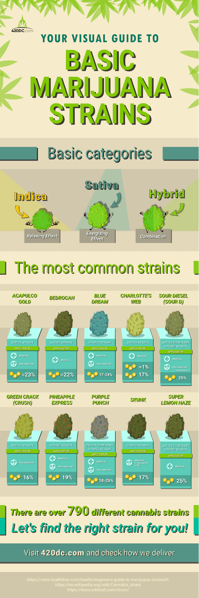 Basic Marijuana Strains