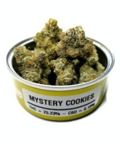 Buy monkey sours marijuana strain, Buy monkey sours online, Buy monkey sours strain Australia, buy monkey sours strain online, Buy monkey sours strain UK, order monkey sours strain Australia, order monkey sours strain online, order monkey sours strain UK, Purchase original monkey sours online, monkey sours, monkey sours for sale, sour mystery cookies, monkey sours space monkey meds, monkey sours space monkey strain, monkey sours strain, monkey sours strain for sale, monkey sours strain for sale Australia, monkey sours strain for sale France, monkey sours strain for sale Germany, monkey sours strain for sale UK, monkey sours weed, space monkey monkey sours strain, where to buy monkey sours strain