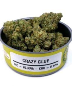 buy crazy glue strain online