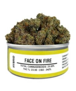 ace on fire , face on fire for sale, face on fire space monkey meds, face on fire space monkey strain, face on fire strain, face on fire strain for sale, face on fire strain for sale France, face on fire strain for sale Germany, face on fire strain for sale UK, face on fire weed, Buy face on fire marijuana strain, Buy face on fire online, Buy face on fire Space Monkey Meds Online, Buy face on fire strain Australia, Get you best face on fire strain online, order face on fire strain Australia, Order face on fire strain online, order face on fire strain UK, Purchase original face on fire online, space monkey, space monkey face on fire strain, space monkey meds, space monkey strain, the face on fire strain, Where to Buy face on fire Space Monkey Meds, where to buy face on fire strain