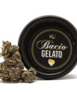 Bacio Gelato for Sale, bacio gelato Strain for Sale, bacio gelato West Coast Cure for Sale, Buy Bacio Gelato, buy bacio gelato Strain, Buy bacio gelato Strain by West Coast Cure, Buy bacio gelato Strain West Coast Cure, Buy bacio gelato West Coast Cure, buy West Coast Cure Bacio Gelato, buy west coast cure bacio gelato online, buy west coast cure online, Order Bacio Gelato Strain, Order bacio gelato West Coast Cure, order west coast cure bacio gelato, PURCHASE bacio gelato WEST COAST CURE, Shop bacio gelato West Coast Cure, west coast cure, west coast cure bacio gelato, west coast cure bacio gelato for sale, west coast cure for sale, Where to Buy Bacio Gelato Strain, Where to Buy bacio gelato West Coast Cure