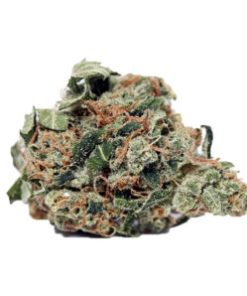 buy blackberry kush online, Buy Chem Dawg, Buy Chem Dawg Online, Buy Chem Dawg with bitcoins online, Buy Chemdawg 4 Marijuana In America, Buy Chemdawg 4 Marijuana In Austria, Buy Chemdawg 4 Marijuana In France, Buy Chemdawg 4 Marijuana In Germany, Buy Chemdawg 4 Marijuana In Hungary, Buy Chemdawg 4 Marijuana Online, Buy Chemdawg Cannabis Strain, Buy Chemdawg online, Buy chemdawg strain, Buy Chemdawg strain online, Buy Chemdawg weed Online, Buy Chemdawg Weed Strain Online, Buy Diamond Valley Kush Online, buy legal weed online, Buy legit weed online, Buy marijuana hybrid, buy marijuana online, Buy Marijuana Online Australia, Buy Marijuana Online Europe, Buy marijuana online in usa, Buy Marijuana Online USA, buy marijuana weed online, Buy medical marijuana CA, Buy Medical Marijuana Online, Buy Moonrock Online UK, buy real marijuana online, buy real weed online, buy skunk online UK, buy synthetic weed online, buy weed online, buy weed online Australia, Buy Weed Online Europe, BUY WEED ONLINE UK, buy weed online USA, Buying weed online, can i buy weed online, can you buy weed online, Chem Dawg, chemdawg 4, Chemdawg 4 cannabis, Chemdawg 4 marijuana, chemdawg 4 strain, chemdawg 91 strain review, chemdawg cannabis strain, chemdawg cbd flower, chemdawg cbd strain, Chemdawg for sale online, chemdawg girl scout cookies, chemdawg marijuana strain, chemdawg og, Chemdawg review, chemdawg seeds usa, chemdawg strain, chemdawg strain flowering time, Chemdawg Strain for, chemdawg strain genetics, chemdawg strain info, chemdawg strain leafly, chemdawg strain review, chemdawg strain thc level, chemdawg strain yield, chemdawg thc strain, chemdawg weed near me, chemdawg weed strain, dispensaries that ship out of state, dopest dankies buy online, Flower, Girl Scout Cookies, Green crack, Happy, How To Buy Chem Dawg Online, How To order Chem Dawg Online, Hungry, Hybrid Weed Strains, is it legal to buy edibles online, Khalifa Kush, kush for sale, legal buds, Mail order marijuana, MARIJUANA C