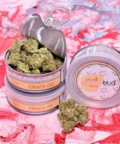 crack og, crack og smart bud, crack og Smart Buds for Sale, crack og smartbud, crack og SmartBud for Sale, crack og strain for sale, buy crack og smart bud online, Buy crack og Smart Buds Online, buy crack og smartbud online, buy crack og strain online, Buy Smart Bud Tins, Buy smart bud tins online, buy smartbud online, Buy your smart bud tins online, crack og, Order crack og Smart Buds, Order crack og, crack og SmartBud, Shop Smart buds, smart bud, smartbud, smartbud cans, Where to Buy crack og Smart Buds, Where to Buy crack og SmartBud