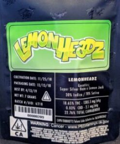 buy Jungle Boys Lemon Headz online, buy weed packs for sales, jungle boys, jungle boys carts, jungle boys clothing, jungle boys dispensary, Jungle Boys Lemon Headz dispensary store, Jungle Boys Lemon Headz for sale, Jungle Boys Lemon Headz online, jungle boys packaging, jungle boys seeds, jungle boys strain, jungle boys strains, jungle boys weed, order Jungle Boys Lemon Headz online, purchase Jungle Boys Lemon Headz online, weed packs for sale