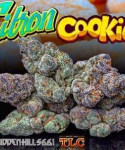buy Jungle Boys Citron Cookies online, buy Jungle Boys Citron Cookies weed packs online, buy jungle boys weed packs online, buy weed packs online, citron cookies, citron cookies marijuana, citron cookies recipe, citron cookies seeds, citron cookies strain, citron cookies strain info, citron cookies strain jungleboys, citron cookies strain leafly, citron cookies weed, citron cookies weed strain, jungle boys, jungle boys carts, Jungle Boys Citron Cookies, jungle boys citron cookies cannarado, Jungle Boys Citron Cookies for sale, jungle boys citron cookies strain, jungle boys citron cookies weed, jungle boys seeds, jungle boys strain, jungle boys weed, jungle boys weed packs online, order Jungle Boys Citron Cookies online, order weed packs online