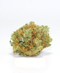 best online store to purchase Mango Haze, buy illegal Mango Haze online, buy Mango Haze in all 50 states, buy Mango Haze in canada, buy Mango Haze in texas, buy Mango Haze legally, Buy Mango Haze online, buy Mango Haze online at discount price, buy Mango Haze out door grow, buy Mango Haze relaible plug, buy Mango Haze weed online uk, buy Mango Haze without card, buy Mango Haze without medical card, buy Mango Haze. buy Mango Haze, buy medical Mango Haze online california, buy painkiller, Buy quality Mango Haze for cheap, craigslist weed for sale, descreet Mango Haze delivery, high times weed for sale, i want to buy Mango Haze, k2 weed for sale, legal weed for sale Cheap, Legal Weed For Sale Online, legal weed for sale UK, Mango Haze, Mango Haze Cannabis Strain, Mango Haze for sale, Mango Haze for sale on craigslists, Mango Haze products for sale, Mango Haze Strain, Mango Haze Strain Review, most relaible site to buy Mango Haze online, online store Mango Haze, real weed for sale, synthetic Mango Haze for sale, weed buds for sale Online, weed buds for sale UK, weed for sale, weed for sale AU, weed for sale online, weed online for sale, where is the most secured site to buy Mango Haze online, where to buy Mango Haze in sydney