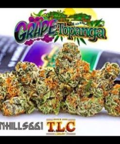 buy jungle boys grape topanga online, buy jungle boys online, buy weed packs online, jungle boys bags, jungle boys carts, jungle boys dispensary, jungle boys grape topanga, Jungle Boys Grape Topanga for sale, Jungle Boys Grape Topanga online, jungle boys online, jungle boys packaging, jungle boys seeds, jungle boys seeds for sale, jungle boys strain, jungle boys strains, jungle boys weed, weed packs for sale, weed packs online